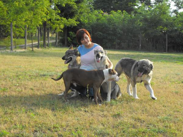 Az ezer arcú csehszlovák farkaskutya