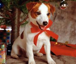 Ebadta karácsony