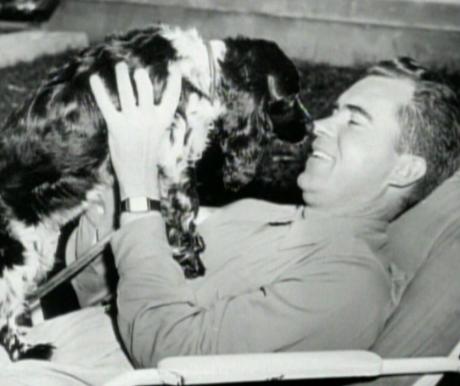Kutyák a II. világháború előestéjén 1.