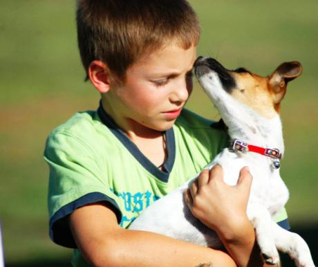 A biztos siker titka: gyerek, kutya…