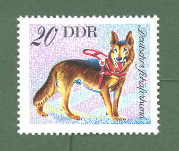 Kutyák bélyegen a hajdani NDK-ban