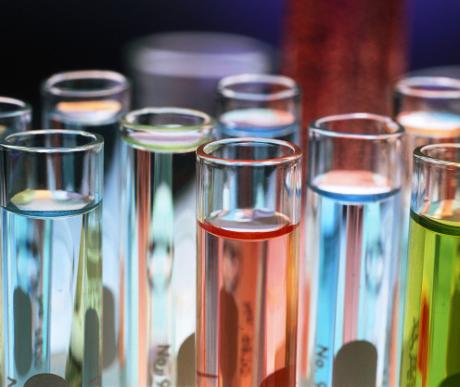 A homeopátia gyógynövényei