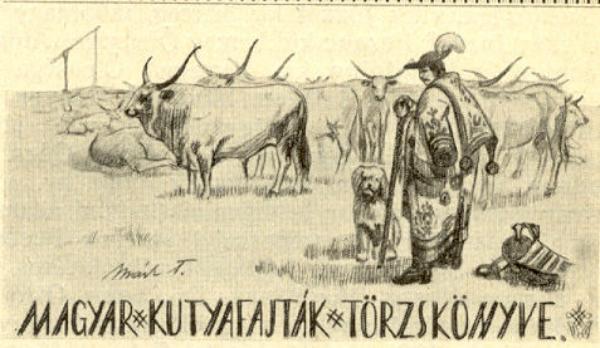 Az ebtörzskönyvezés hajnala Magyarországon 1.