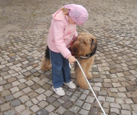 Amikor csak egy kutya segíthet