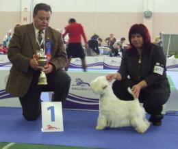 Magyarok az Európa Dog Show-n